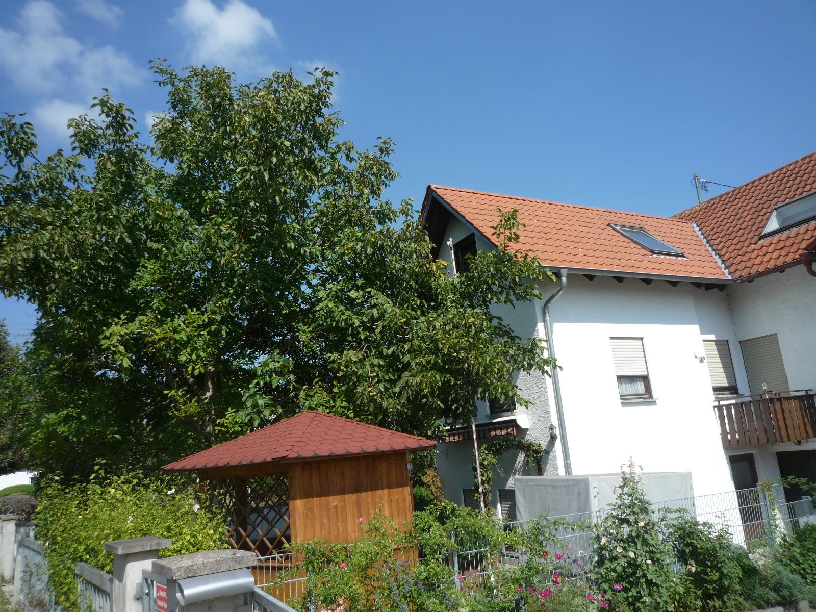 Jagode Immobilien DHH Altenstadt 1